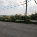 沖縄市比屋根 中城湾を望む高台♪